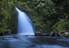 Vattenfall i regnskog på Mount Kenya Royaltyfri Bild