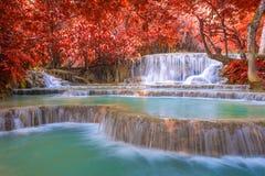 Vattenfall i regnskogen (Tat Kuang Si Waterfalls Arkivbilder