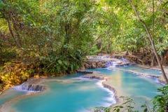 Vattenfall i regnskogen (Tat Kuang Si Waterfalls Arkivbild