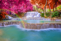 Vattenfall i regnskogen (Tat Kuang Si Waterfalls ), Royaltyfria Foton
