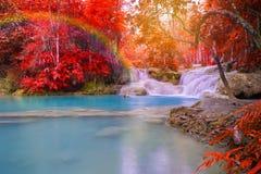 Vattenfall i regnskogen (Tat Kuang Si Waterfalls på Laos ), Royaltyfri Fotografi