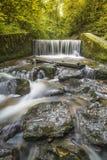 Vattenfall i skog Royaltyfri Foto