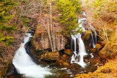 Vattenfall i skog Fotografering för Bildbyråer