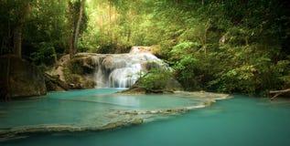 Vattenfall i skog med solljusstrålar och strålar till och med träd