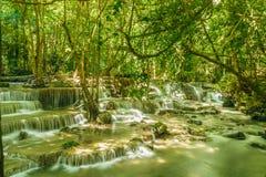 Vattenfall i skog med trädet Arkivbilder
