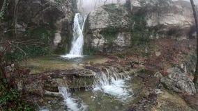 Vattenfall i skogen lager videofilmer