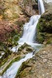 Vattenfall i skogen Arkivbild