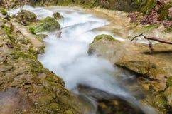 Vattenfall i skogen Arkivfoto