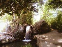 Vattenfall i skogen Royaltyfri Foto