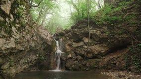Vattenfall i skogen stock video