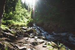 Vattenfall i skogen, Altai republik Royaltyfria Bilder