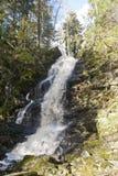 Vattenfall i skogen, härligt landskap Ryssland arkivfoton