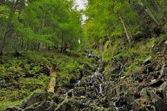 Vattenfall i skogen med bakgrund av stenen Arkivfoto