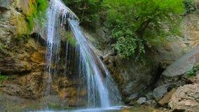 Vattenfall i skogen, mossiga kullar arkivfilmer