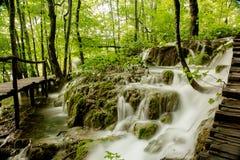 Vattenfall i skogen, Plitvice, Kroatien Royaltyfri Fotografi