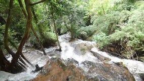 Vattenfall i skogen Thailand arkivfilmer