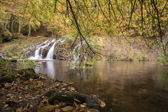 Vattenfall i skogen under höst Härlig sikt av en flod med en vattenfall i skogen Arkivfoton