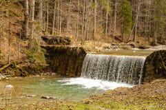 Vattenfall i skogfloden Royaltyfri Bild