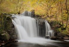 Vattenfall i skogsmark Royaltyfri Fotografi