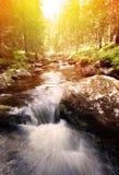 Vattenfall i Sverige arkivbild