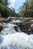 Vattenfall i Tamanen Negara Nationalpark royaltyfria bilder