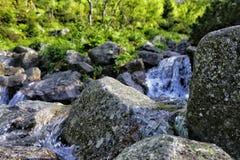 Vattenfall i Tatra unmotain Polen Royaltyfri Bild