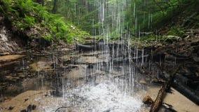 Vattenfall i träöglan lager videofilmer