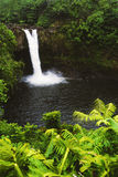 Vattenfall i tropisk djungel Arkivbilder