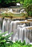 Vattenfall i tropisk djup skog Arkivfoton
