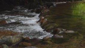 Vattenfall i tropisk regnskog lager videofilmer