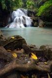 Vattenfall i tropisk skog Royaltyfri Fotografi