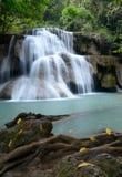 Vattenfall i tropisk skog Arkivbilder