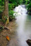Vattenfall i tropisk skog i Thailand Royaltyfria Bilder