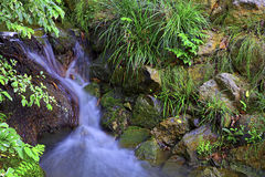 Vattenfall i vårträdgård Arkivfoton