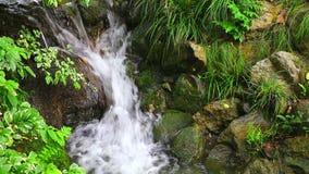 Vattenfall i vårträdgård arkivfilmer