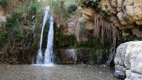 Vattenfall i Wadi David, Israel Royaltyfria Bilder