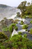 Vattenfall Iguacu Royaltyfria Bilder