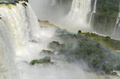 Vattenfall Iguacu Royaltyfri Bild