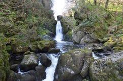 Vattenfall jäkeldalgång, wicklow Irland Royaltyfria Foton
