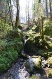 Vattenfall jäkeldalgång, wicklow Irland Royaltyfria Bilder