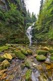 Vattenfall Kamienczyk i Polen Arkivfoto