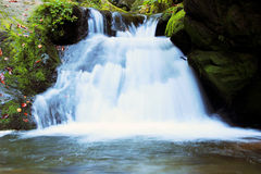 Vattenfall - kaskad i höstskogen Arkivfoton