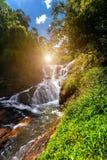 Vattenfall kaskad, trä Royaltyfri Foto