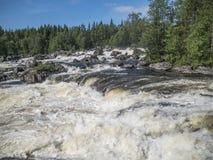 Vattenfall Kivakkakoski i den Paanajärvi nationalparken Arkivfoto