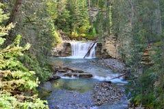 Vattenfall längs den Icefields gångallén i de kanadensiska steniga bergen mellan Banff och jaspisen Fotografering för Bildbyråer