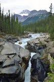 Vattenfall längs den Icefields gångallén i de kanadensiska steniga bergen mellan Banff och jaspisen Arkivbilder