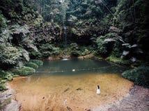 Vattenfall@ Lambir nationalpark royaltyfria bilder