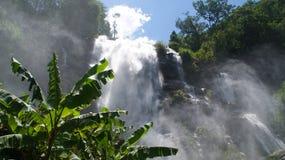 Vattenfall med palmträdet royaltyfri fotografi