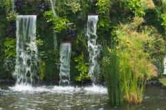 Vattenfall med papyruset Royaltyfri Foto
