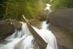 Vattenfall med vaggar i skog Arkivbild